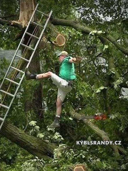Pořádnej držkopád ze stromu