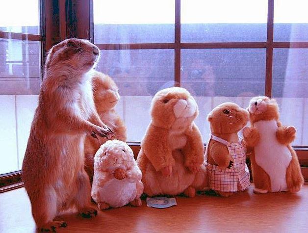 Báječná rodinka