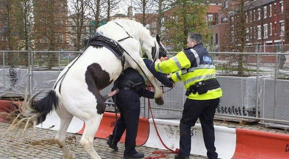 Chudák policista