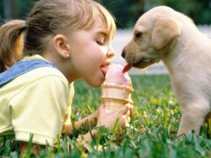 Dobrá zmrzlina