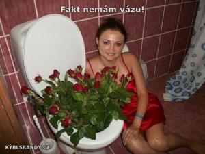 Fakt nemám vázu!
