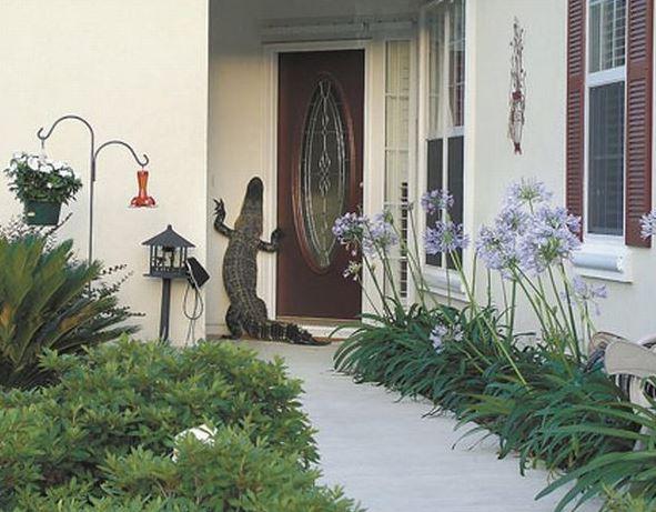 Kdopak to zvoní u dveří?