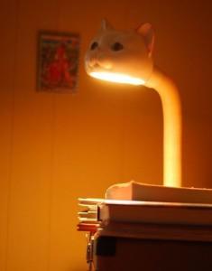 Kočičí lampička
