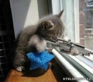 Kočičí sniper