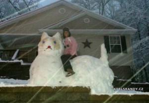 Kočka ze sněhu