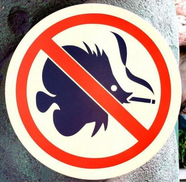 Kouřící ryby - vstup zakázán