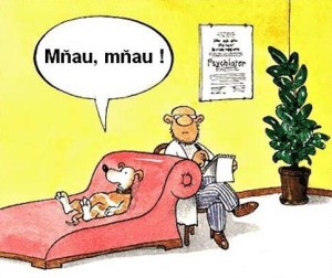 Srandovní kreslené vtipy