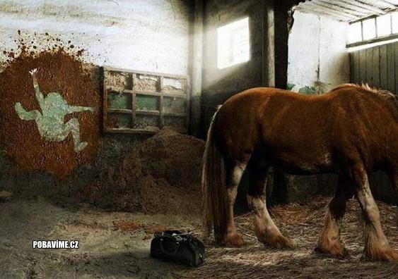 Kůň si pořádně ulevil