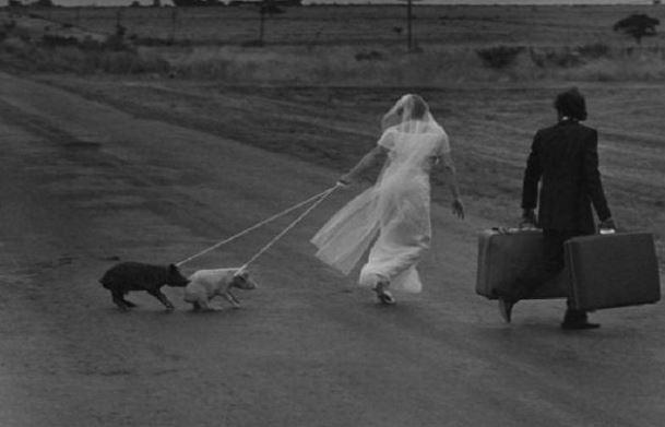 Nevěsta s čuníkama