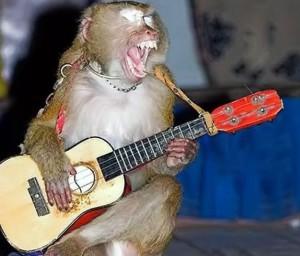 Opice hudebník