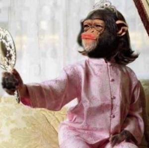Opičí fešanda
