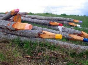 Pastelky ze stromů