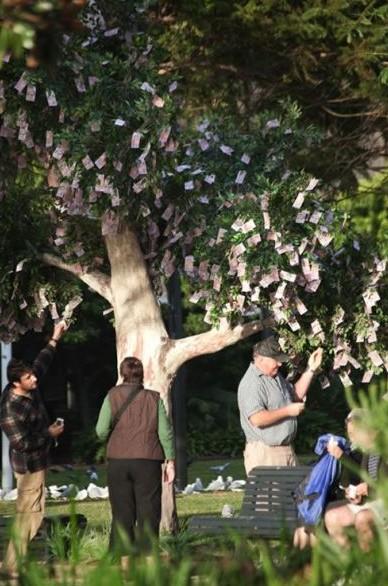 Tady rostou peníze na stromě