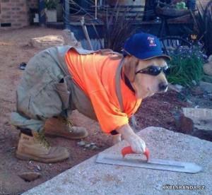 Pes řemesník