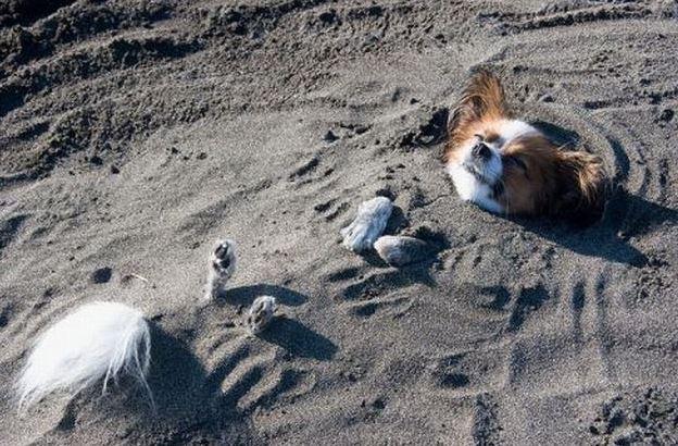 Pohodička v písku