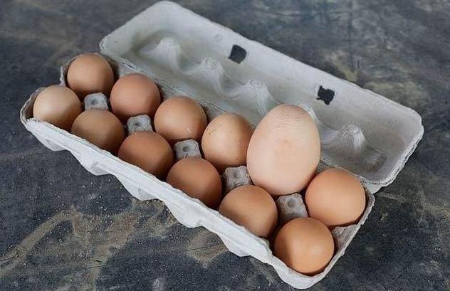 Příliš velké vejce