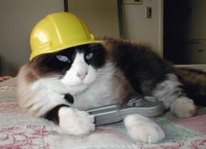 Půjdeme opravovat