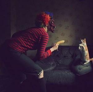 Ruce vzhůru kočko