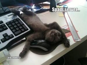 Spadl server