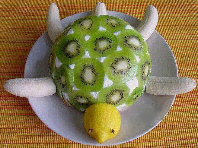 Tak tuto želvu bych s chutí snědl
