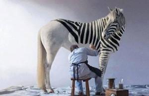 Takto vznikají zebry