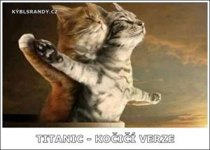 Titatnic - kočičí verze