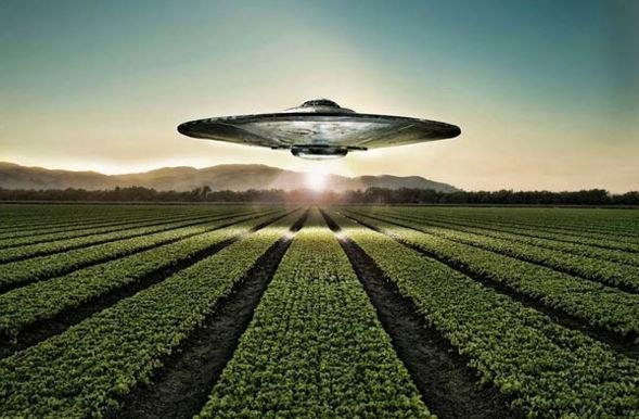 UFO na polem