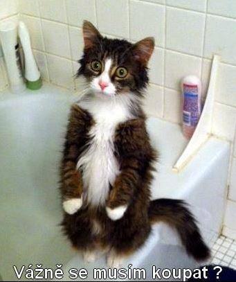 Vážně se musím koupat?