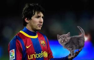 Zahrajem si s kočkou