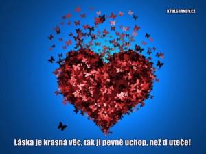Láska je krasná věc