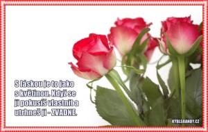 S láskou je to jako s květinou