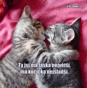 Ty jsi má láska největší, má kočička nejsladší