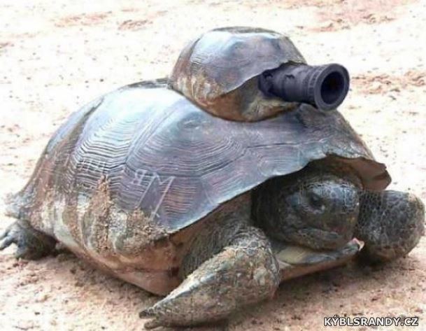 Želva s kanónem